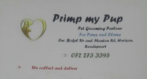 primp-my-pup